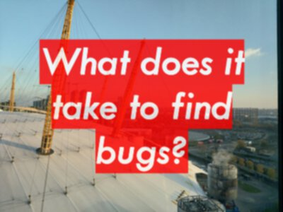 What does it take to find bugs?