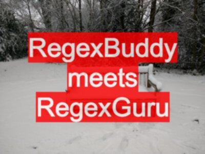 RegexBuddy meets RegexGuru - EvilTester com
