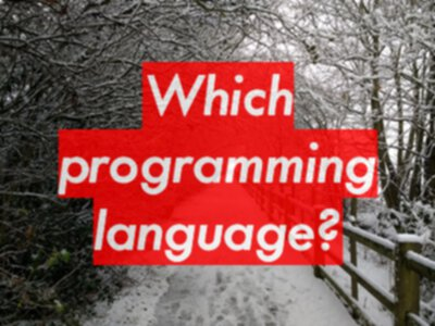 Which programming language should I learn?